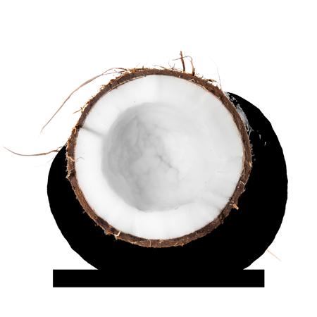 ingredient-magic-lait-coco