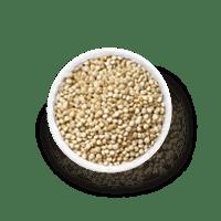 protéine de quinoa