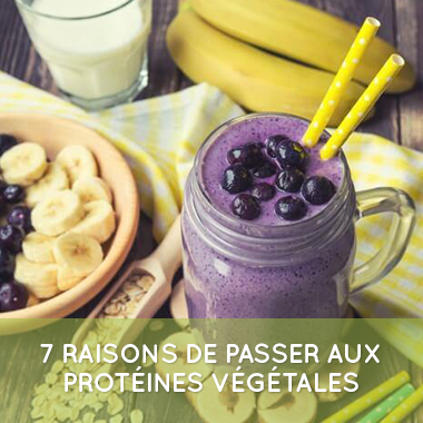 7-raisons-protein-vegan
