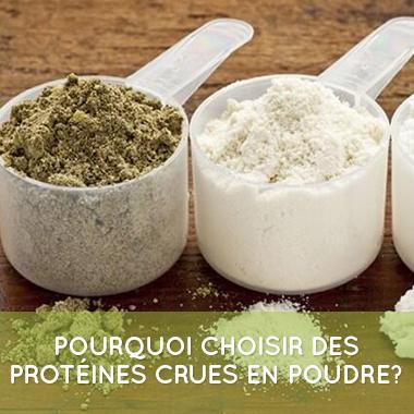 proteine-crue